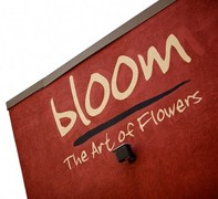 Bloom the Art of Flowers - Florists, Coordinators/Planners - 4212 Granby Street, Norfolk, virginia, 23504, usa