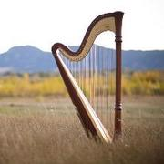 Harpist - Mary Keener - Bands/Live Entertainment, Ceremony Musicians - Denver, CO