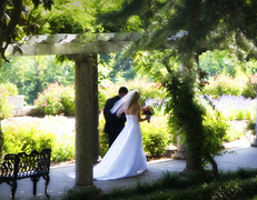 Maymont - Ceremony Sites, Attractions/Entertainment, Ceremony & Reception - 1700 Hampton St., Richmond, VA, 23220, USA