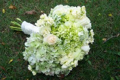 Carrie Anne Powell Floral Designs - Florists, Decorations - Pittsburgh, PA, 15236