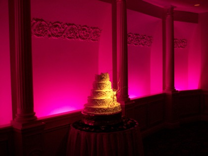 Cake Lighting for Ohio Weddings - Flowers and Decor - FOX ENTERTAINMENT-DJs in Ohio