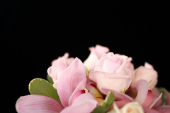 Fleurtation Flowers - Florist - 3041 East 28th Avenue, Vancouver, BC, V5R 1S6, Canada