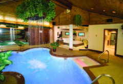 Sybaris Pool Suites - Honeymoon - 7500 West Lincoln Highway, Frankfort, IL, 60423, USA