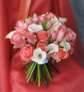 Creative Muse Floral Design - Florists, Coordinators/Planners - PO Box 255, Bakersfield, VT, 05441, USA