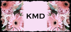 KMD - Photographers, Favors - Orlando, Florida, USA