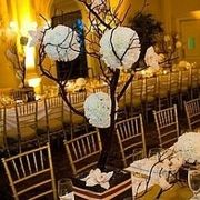 MOD events  - Decorations, Florists, Coordinators/Planners - 618 Eighty Oak Avenue, Mount Pleasant, SC, 29464, USA
