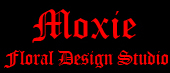 Moxie Floral Design Studio - Florist - 116A Princess Street, Wilmington, NC, 28401, USA