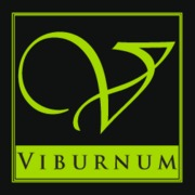 VIBURNUM - Florists, Wedding Day Beauty - 202 Nassau Street, Princeton, NJ, 08540, USA