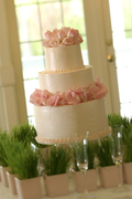 Classic Cakes - Cakes/Candies Vendor - 100 Ne Tudor Rd. Suite 107, Lee's Summit, MO, 64086, USA