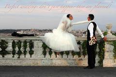 Gabriella Lojacono: Wedding in Rome - Coordinators/Planners - 76, Via dei Crispolti, Rome, Italy, 00159, Rome