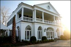 Lowndes Grove Plantation - Ceremony Sites, Reception Sites, Ceremony & Reception - 266 Saint Margaret Streeet, Charleston, SC, 29403, United States
