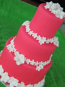 Music City Cakes - Cakes/Candies, Favors - 8731 Horton Highway, College Grove, Tennessee, 37046, USA
