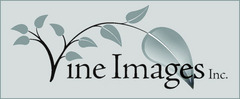 Vine Images Inc. Julie Johnson Photography - Photographers - 2173 Berwick Drive, Burlington, ON, L7M5C2, Canada