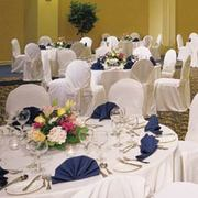 Toronto Don Valley Hotel - Hotels/Accommodations, Honeymoon - 1250 Eglinton Avenue East, Toronto, Ontario, M3C 1J3, Canada