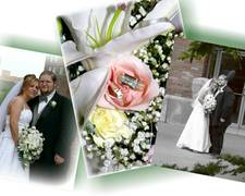 C.L.H. Photography - Photographers - 256 W. Leigh St., Homer, Mi, 49245, USA