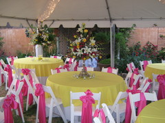 Festive Occasions Wedding & Party Rentals - Rentals, Florists - 3501 50th Street, Mission Plaza, Lubbock, Texas, 79413, USA