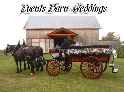 The Events Barn is located on a quiet country road and works well for a horse a buggy ride.  -  - Dhaseleer Events Barn, LLC.