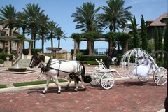 Country Carriages Inc. - Limos/Shuttles, Attractions/Entertainment - St Augustine, Fl, 32084, US