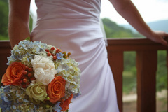 University Florist - Florists, Coordinators/Planners - 165 South Main Street, Lexington, VA, 24450, US
