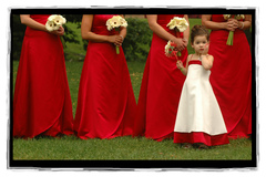 Marci Curtis - Wedding Photojournalist in Troy, MI