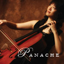 Panache Entertainment - Band - 292 Falling Brook, Troy, MI, 48098