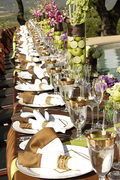 Anthony's Gourmet Catering INC. - Caterers, Coordinators/Planners - 670 Kingsley Avenue, Orange Park, Florida, 32073, USA