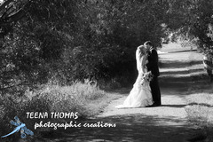 Teena Thomas Photographic Creations - Photographers - Sherwood Park, Alberta, Canada