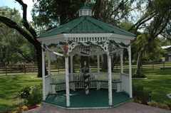 Oak-K Farm (The Wedding Place) - Ceremony & Reception, Limos/Shuttles, Ceremony Sites - 1349 Cherry Lane, Lakeland, Florida, 33811, USA