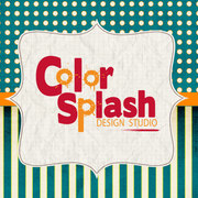 Color Splash Studio - Photographers - 202 Trowbridge Street, Allegan, MI, 49010, USA