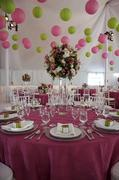 Sugar Rush Events - Coordinator - 90 Shirley, Alamo, CA, 94507