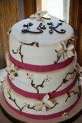 cake-ology - Cakes/Candies, Decorations - 85 Arthur Street, Winnipeg, Manitoba, R3B 1H2, Canada