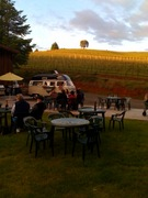 LaVelle Vineyards - Wineries, Attractions/Entertainment, Coordinators/Planners - 89697 Sheffler Rd., Elmira , OR, 97437, United States