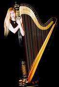 Kari Gardner, harpist - Bands/Live Entertainment, Ceremony Musicians - Grayslake, IL, 60030, USA