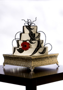 By Request Wedding Cakes - Cakes/Candies - 61 S 5th Ave, Brighton, Co, 80601, USA