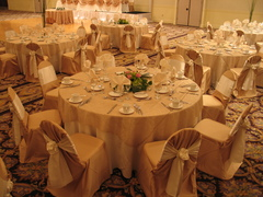 Holiday Inn Joliet Banquet & Conference Center - Ceremony & Reception, Hotels/Accommodations - 411 South Larkin Ave, Joliet, Illinois, 60436, USA