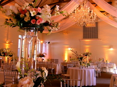 DesignLight - Lighting, Decorations - 85 County Street, Dover, Mass, 02030, USA