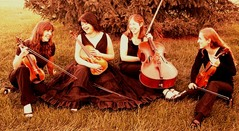 Cassiopeia String Quartet - Ceremony Musicians - 41 N. Yellostone Dr., Madison , WI, 53705, USA