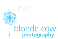 Blonde Cow Photography - Photographers - 505 Burns Lane, Sarasota, Florida, 34236, USA