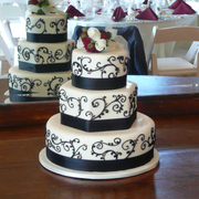 Intricate Icings Cake Design - Cakes/Candies Vendor - 149 South Briggs Street, Suite 100, Erie, Colorado, 80516, USA