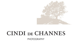 Cindi de Channes Photography - Photographers, Photo Sites - 7 Fourth Street, Suite 1, Petaluma, CA, 94952
