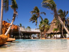 Coconut Cove Resort & Marina - Florist - 84801 overseas Hwy, Islamorada, Florida, 33036, USA
