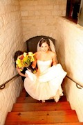 Aimage Wedding Photography - Photographers, Registry - 7700 North Lamar Blvd., Austin, Texas, 78752, USA