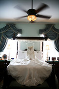 Savannah Wedding Studio - Florist - 1818 Abercorn Street, Savannah, Ga, 31401, US
