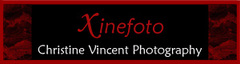 Xinefoto Christine Vincent Photography - Photographers - Fca. Rodriguez 461, Puerto Vallarta, Jalisco, 48380, Mexico