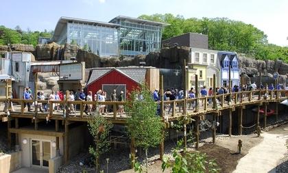 Pittsburgh Zoo Ppg Aquarium Wedding Venues Vendors