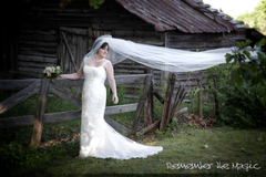 Dan Murray Photography, Inc. - Photographers, Officiants - 403 Del Norte Road, Greenville, SC, 29615, USA