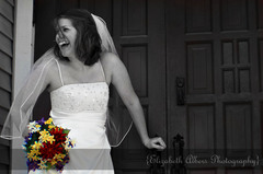 Elizabeth Albers Photography - Photographers - 322 West Benton St, Mount Carroll, IL, 61053, USA