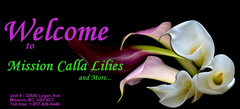 Mission Calla Lilies and More - Florists, Decorations - 9 - 32650 Logan Ave, Mission, BC, V2V 6C7, Canada