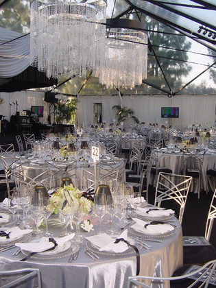 Call Lioness Events for that elegant touch from Tents & Decor, Tables & Chairs & Speciality linens...Dishware plain & simply to clear & square. - Flowers and Decor - Lioness Events & A Lioness Event Production