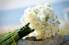 Dorothy's Floral Studio - Florists, Florists - Kalamazoo, Michigan, 49006